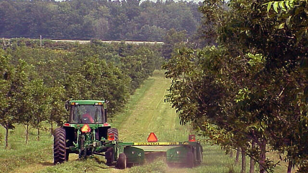 Report: Cost of farming increasing in Wisconsin