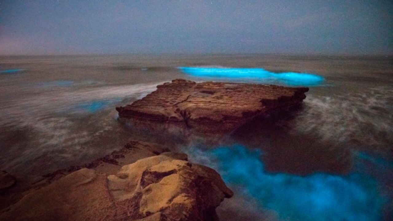 Red tide creates eerie glow on San Diego coast