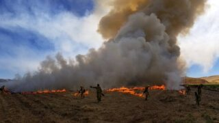 CAL FIRE conducts prescribed burn in Shandon for training