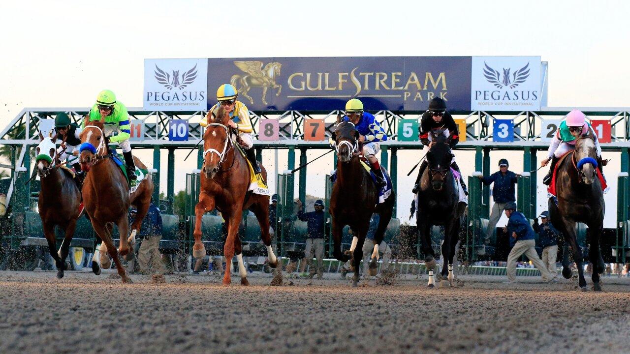 Horse Racing Prize Money