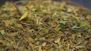 She drank kratom tea while pregnant. Then her newborn went into withdrawal