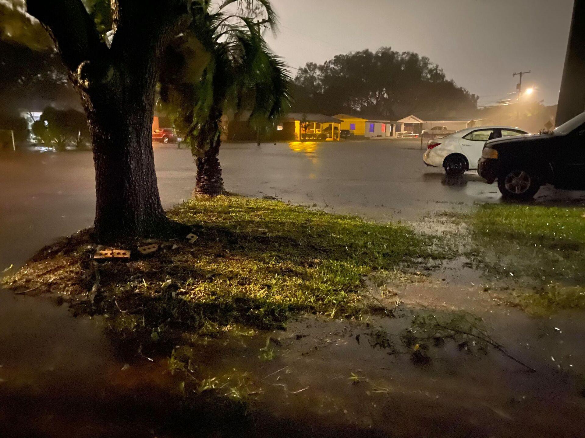 Oldsmar_Mobbly Bayou Flooding_Holli Purcell 2.jpg