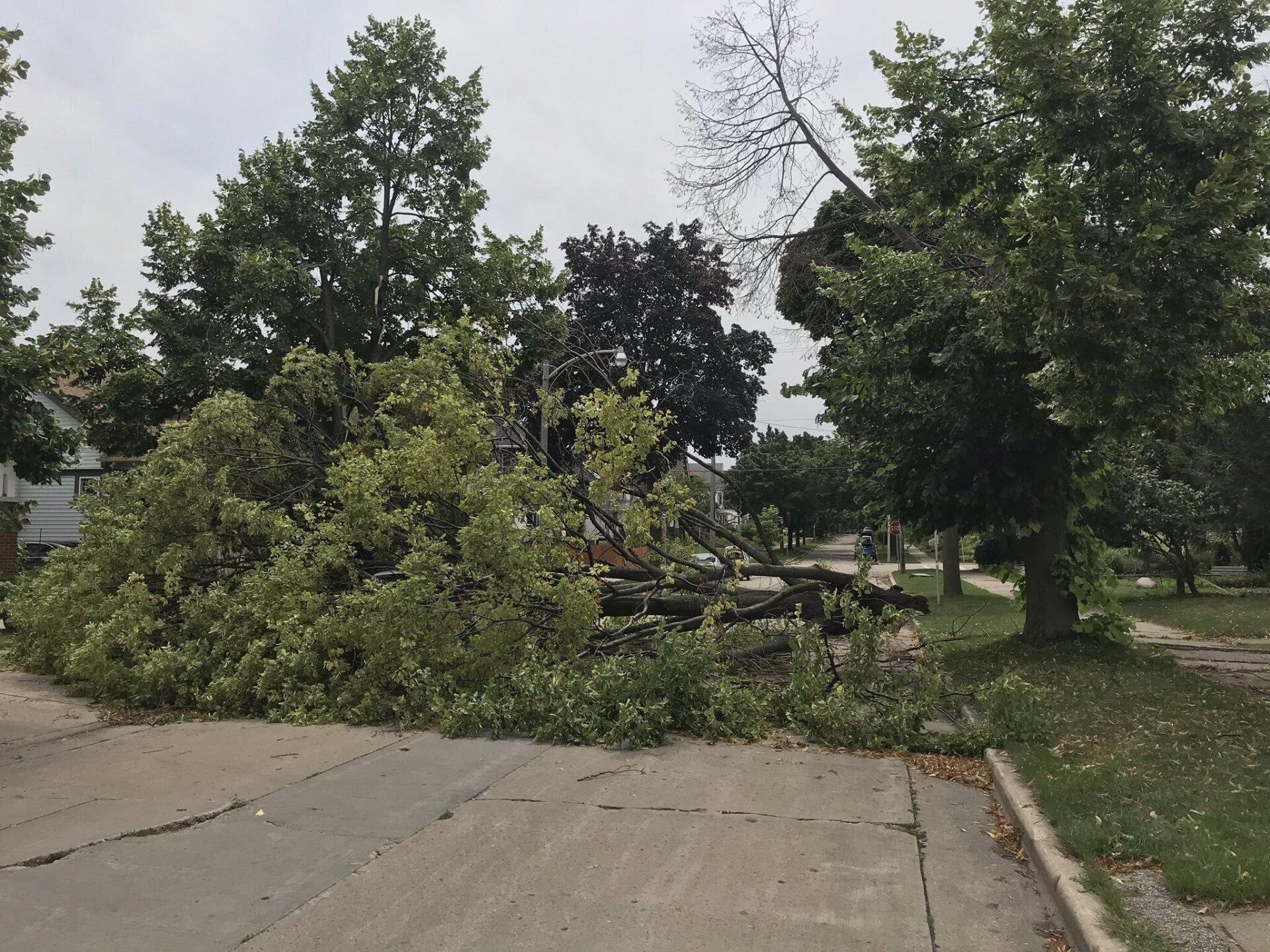 Storms-Damage-4.jpg