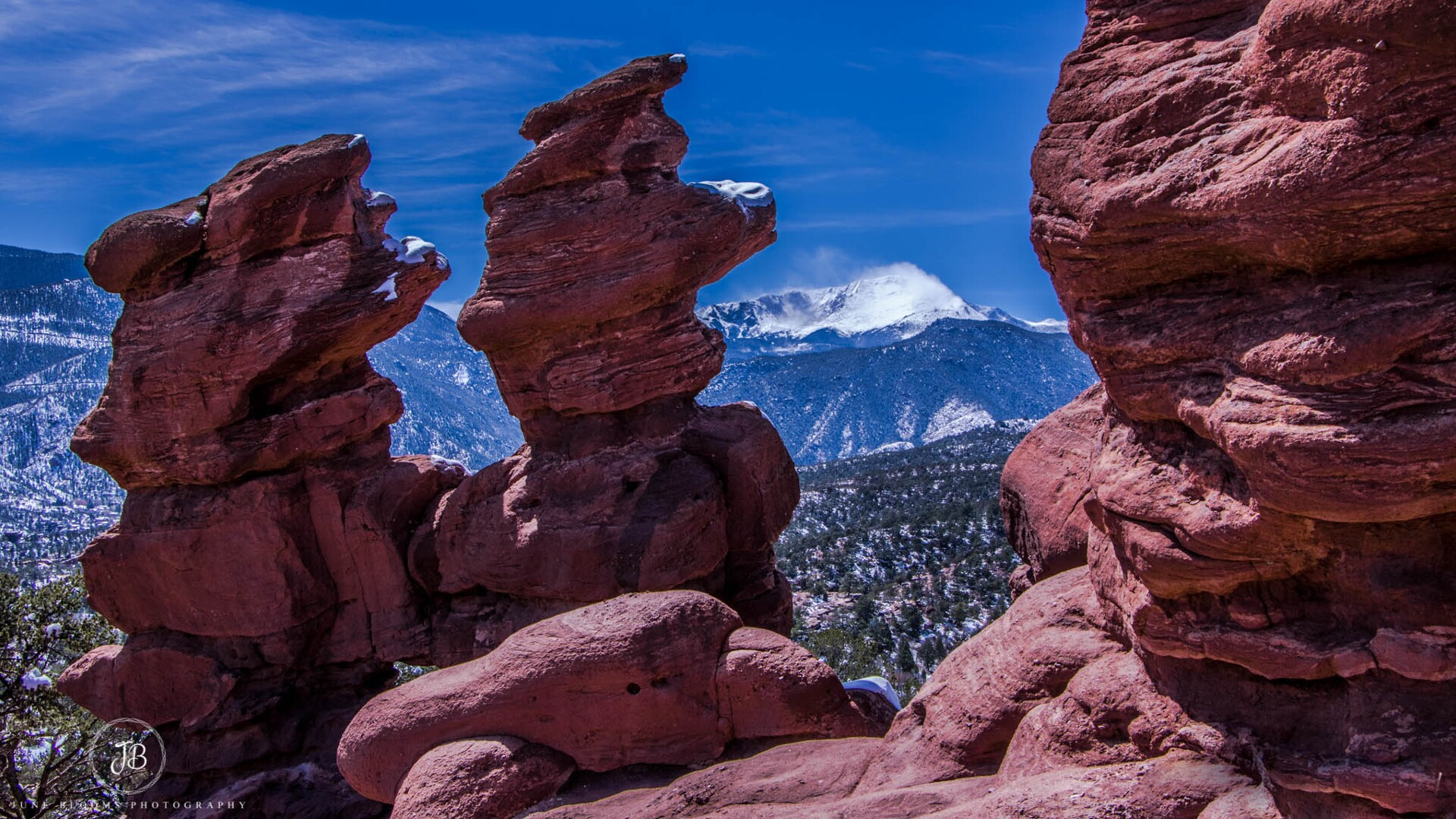 Siamese Twins at Garden of the Gods June Blooms Photography.jpg