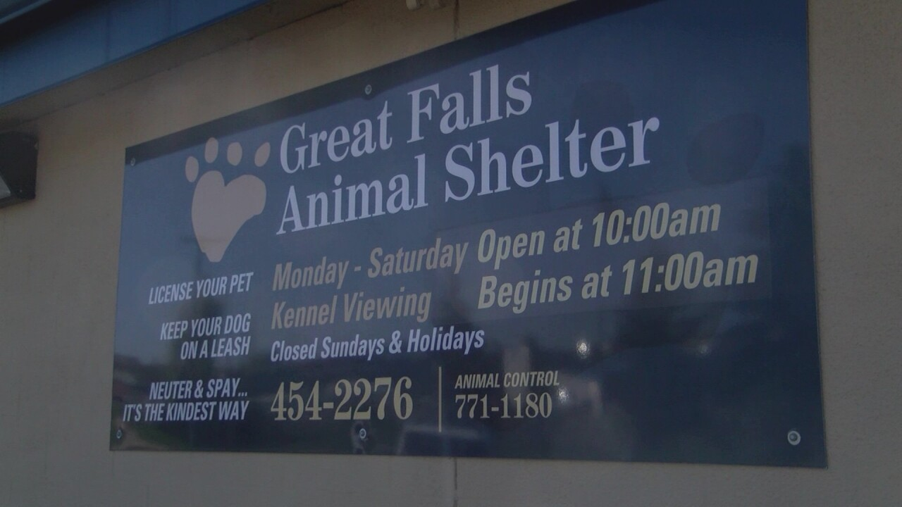 Great Falls Animal Shelter (September 2019)