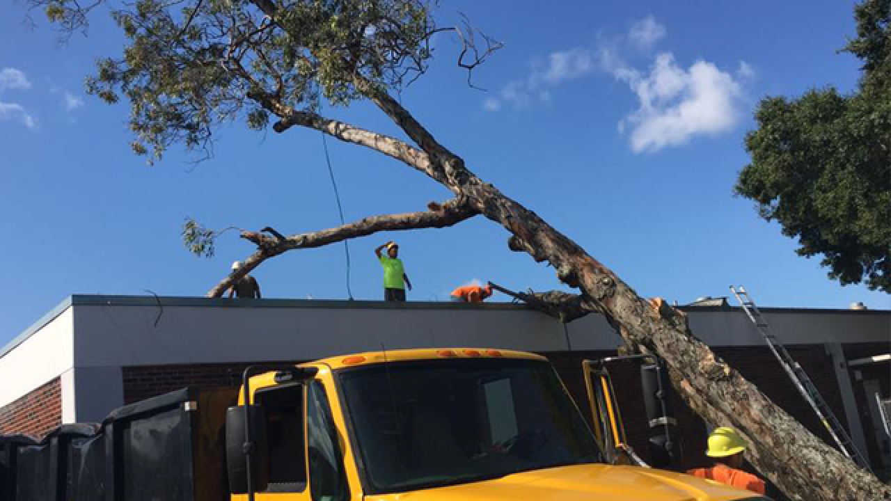 Schools can cut back year by 2 days due to storm