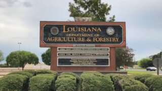 Louisiana Dept of Ag and Forestry