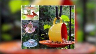 Unique DIY bird feederideas