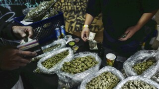 Election 2020-Marijuana Legalization