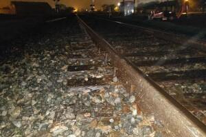 juvenile chase from Oscar Rivera train tracks.jpg
