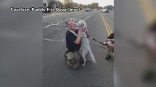 Pueblo firefighters rescue dog.jpg
