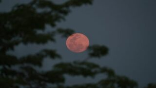 Strawberry Moon 2021: How To See The Final Supermoon Of The Year