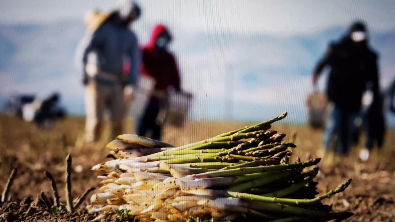 Farmers working to stay ahead of the coronavirus to get food to Americans