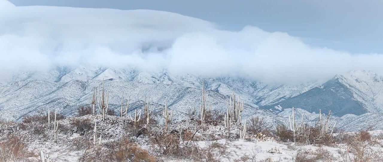 Niccole Neely Four Peaks.jpg