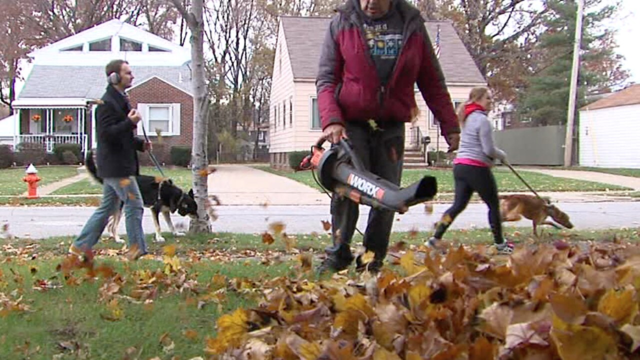 CLE leaf pick-up is back, some feel left out