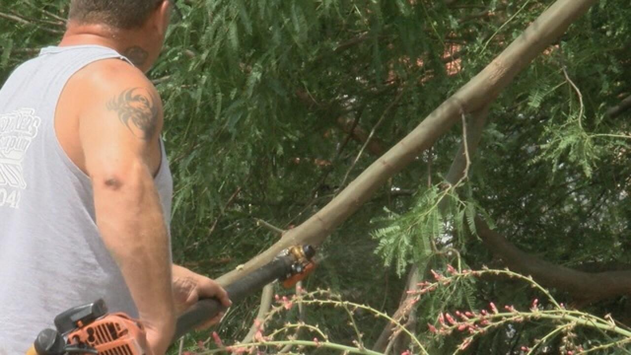 Weekend monsoon leaves behind damage across town