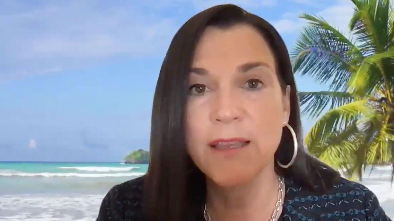 Dana Young, Visit Florida President