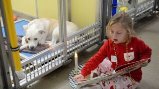 shelter-dog-reading-02-ht-jef-191211_hpEmbed_7x5_992.jpg