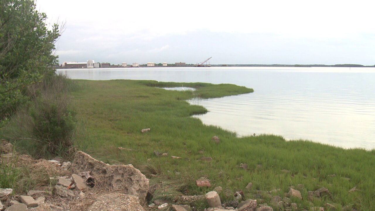 Portion of Back River in Hampton back open to shellfish harvesting after sewagespill