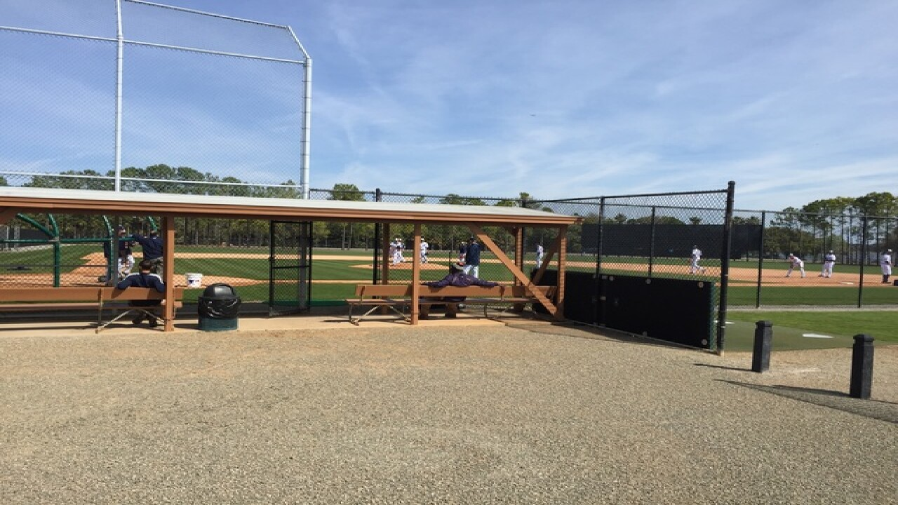 PHOTOS: Tigers begin Spring Training in Lakeland