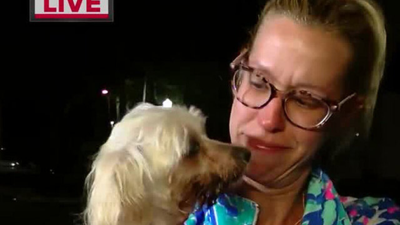 Dog stolen from Petco returned to owner