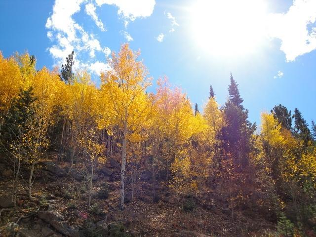 GALLERY: Spectacular places to see fall color in Colorado