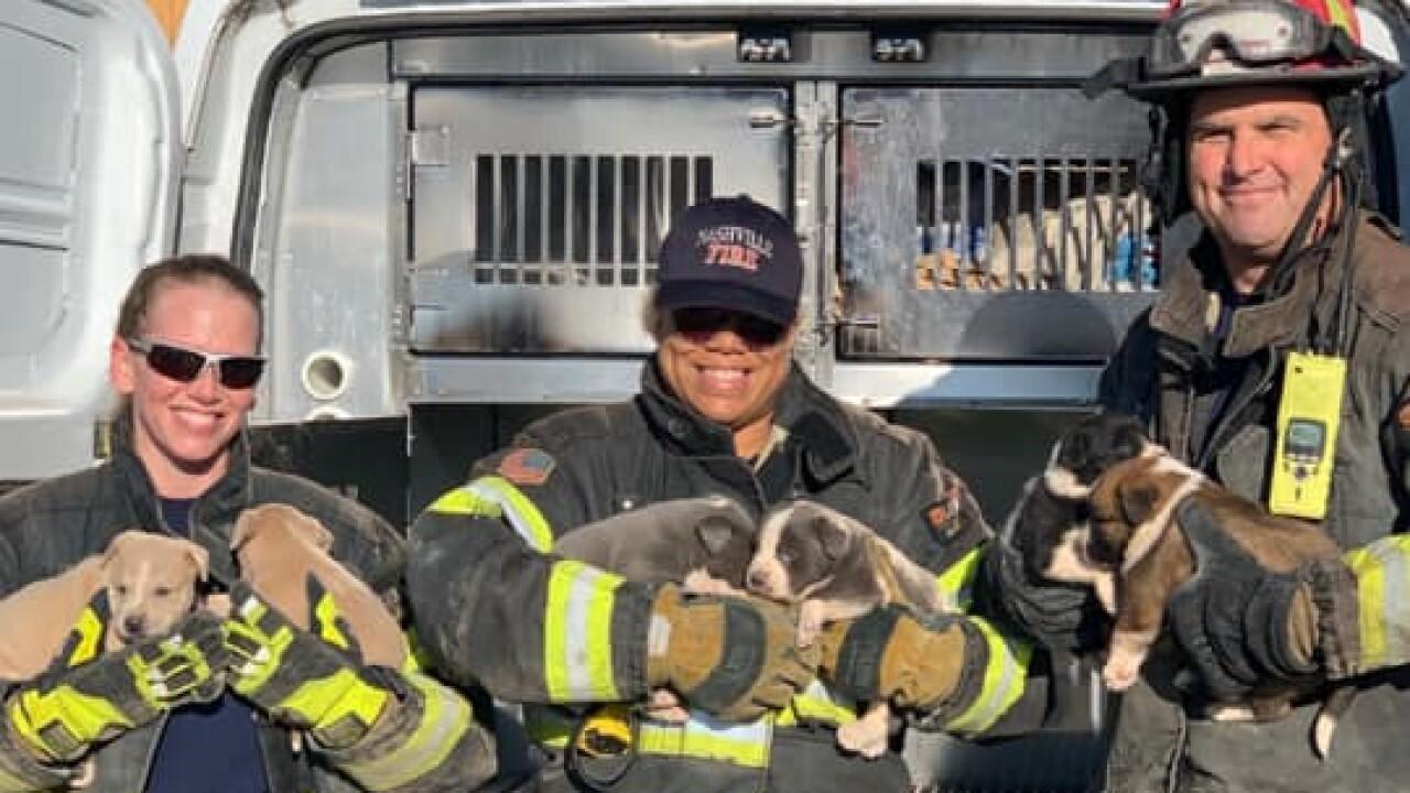 Nashville Fire Department.jpg