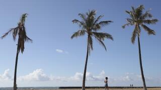 Virus Outbreak HawaiI Travel Testing