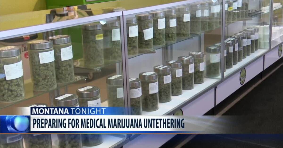 "?url=https%3A%2F%2Fewscripps.brightspotcdn.com%2Fec%2F78%2F51a7eb8f4b50b4a47394dc999eb1%2Fposter 13 - Montana medical marijuana patients will soon be ""untethered"" from providers - KRTV Great Falls News"