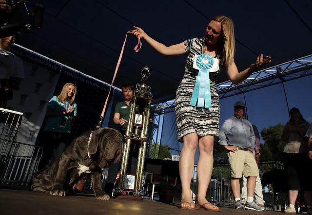 Photos: Meet Martha, the 125-pound Mastiff crowned World's Ugliest Dog