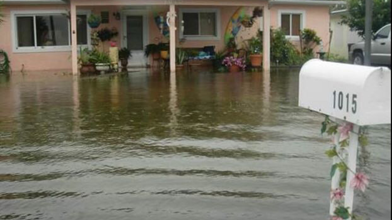 st-pete-flooding.png