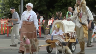 Pet and Doll Parade takes over downtown Great Falls on Thursday