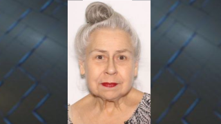 TPD searching for missing 79-year-old woman .png