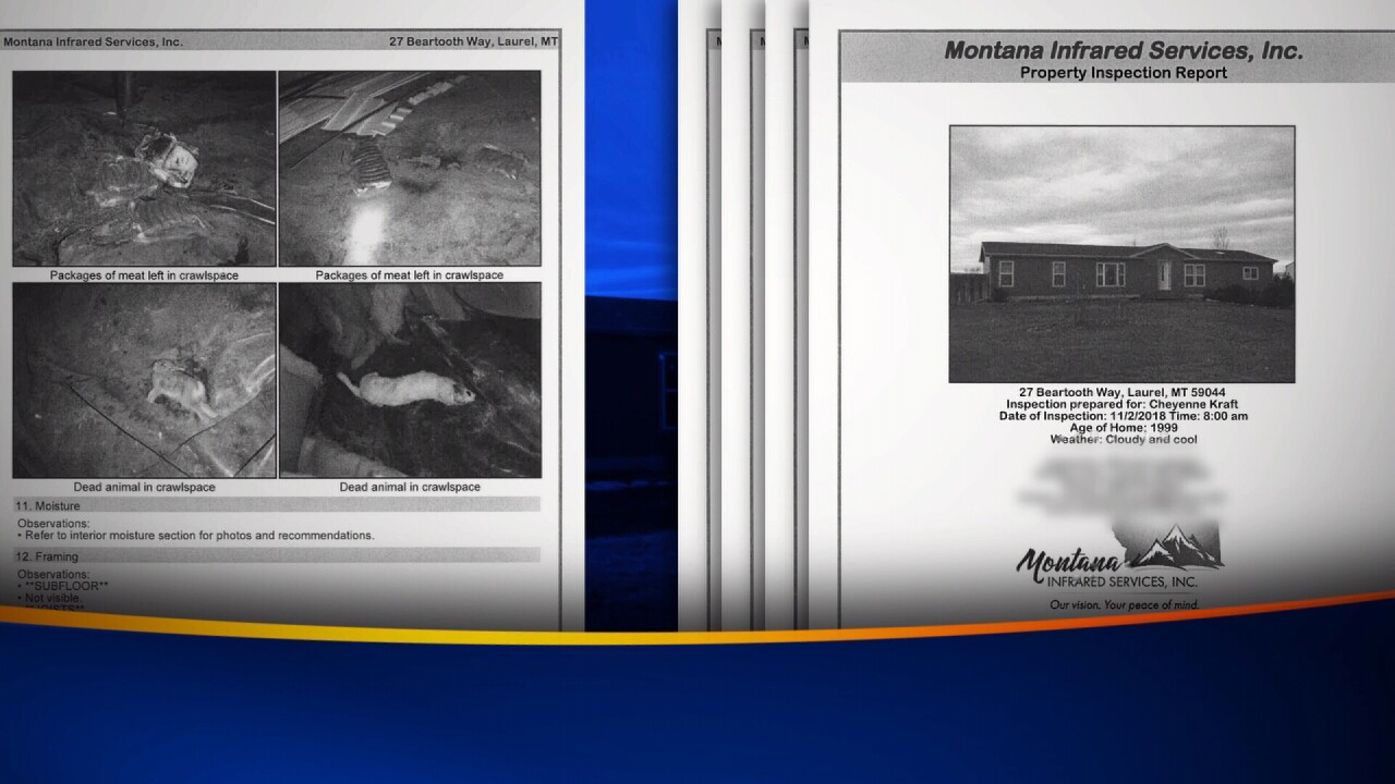 An inspection report shows pictures of dead animals in the crawlspace