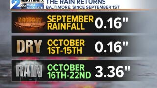 The Rain Returns