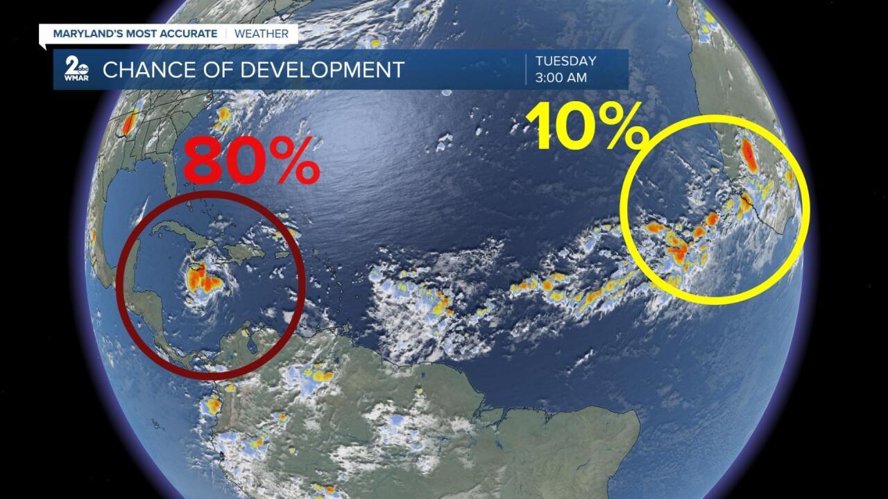 Tropical Development.jpg