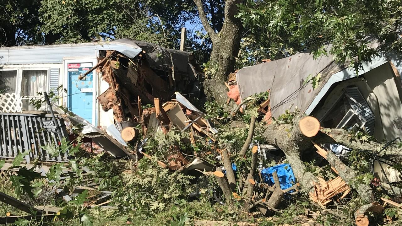 Home sliced in half as tree crashes through Virginia Beach mobilehome