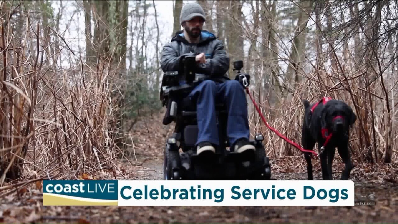 The bond between service dogs and those who need their assistance on Coast Live