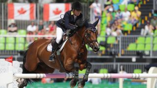 Australia showjumpers can compete after teammate's cocaine scandal