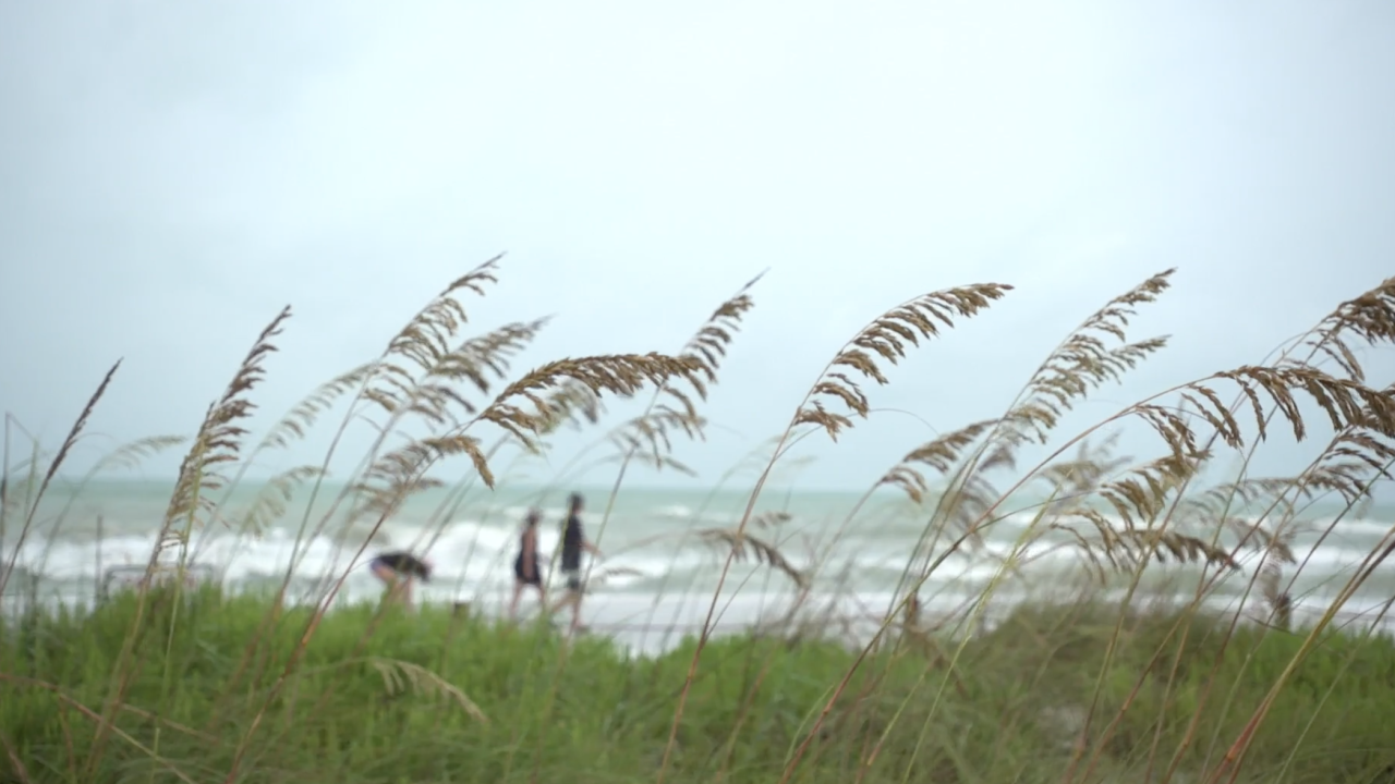 Visitors along Florida's west coast braved getting close to the Gulf of Mexico, ahead of the Tropical Storm Elsa's impacts.