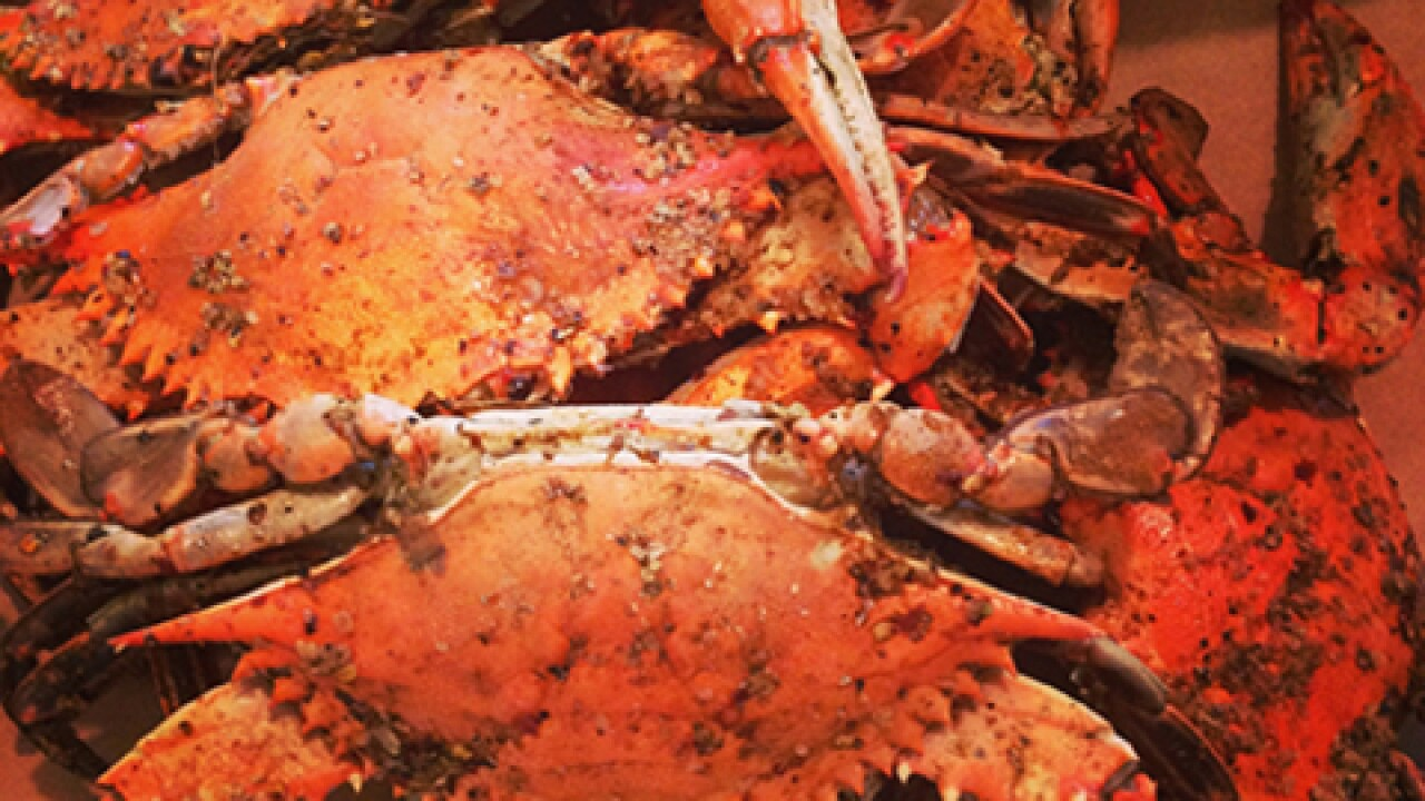 The 41st Annual J. Miliard Tawes Crab and Clam Bake is Wednesday
