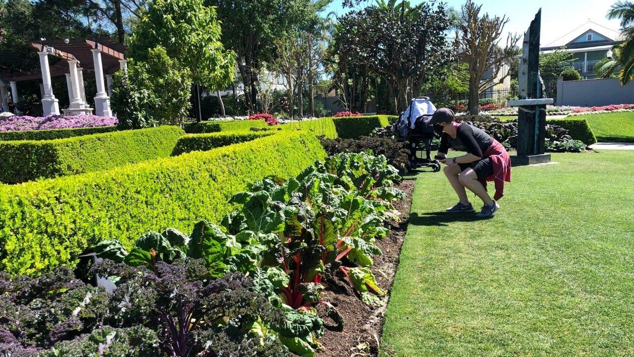 hollis-gardens-lakeland4.jpg