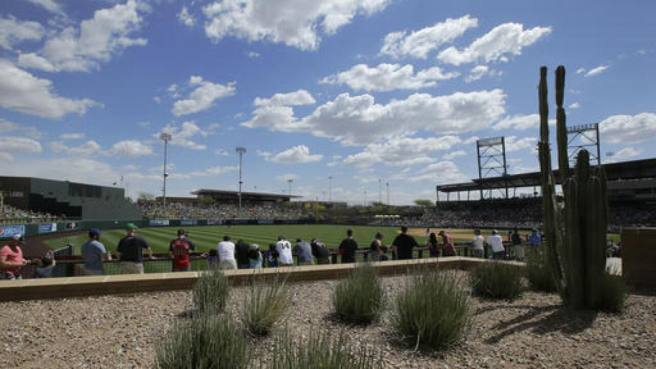 AP Photo - Spring Training Salt River Fields at Talking Stick