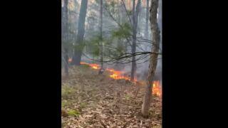 Fremont Fire.JPG
