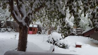 Spring snowstorm turns Denver metro into winter all over again