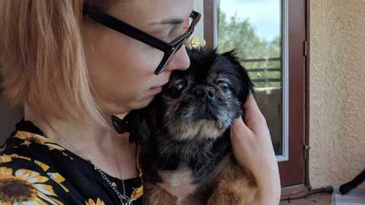 Woman claims rescue group 'stole' her dog