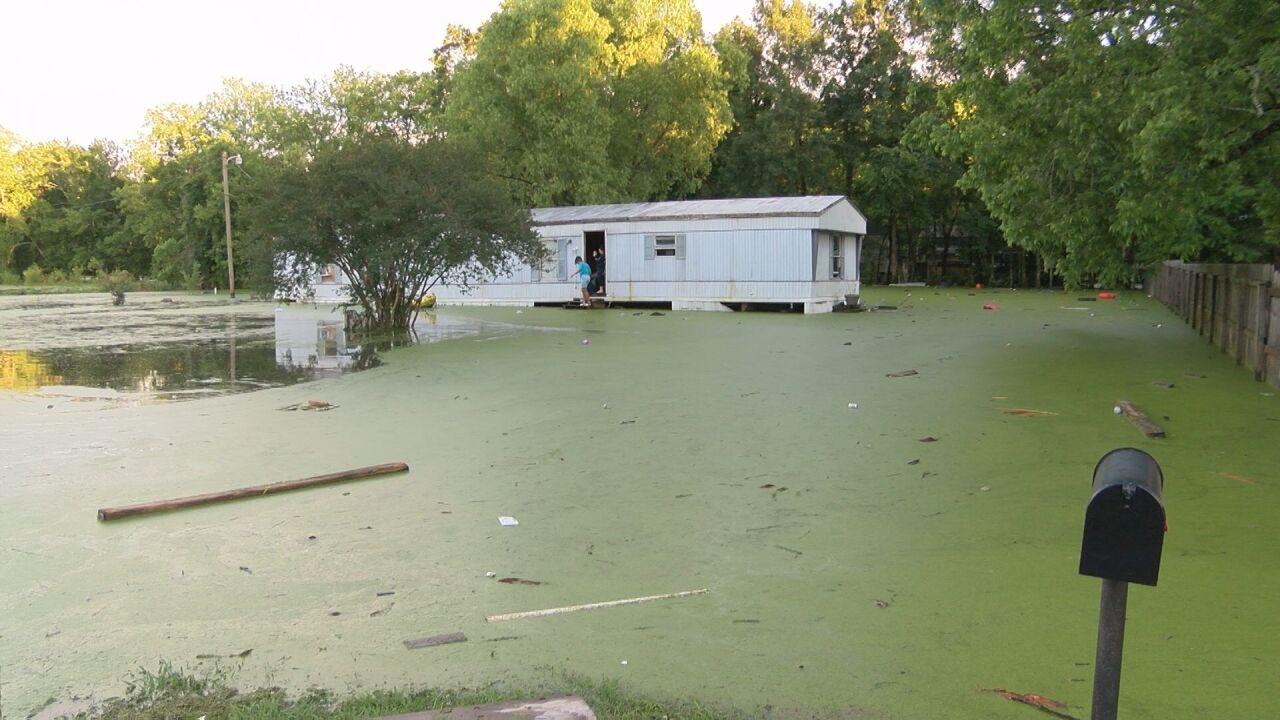 FLOOD WATER.jpg
