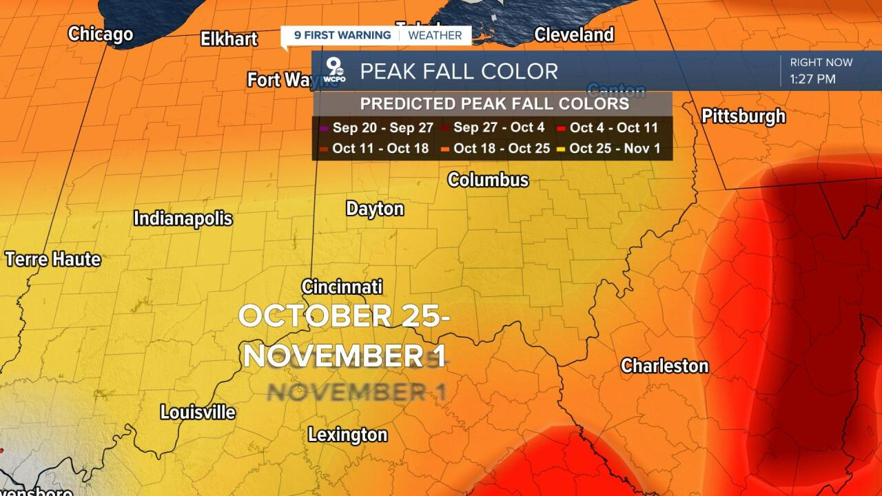 Cincinnati peak fall color
