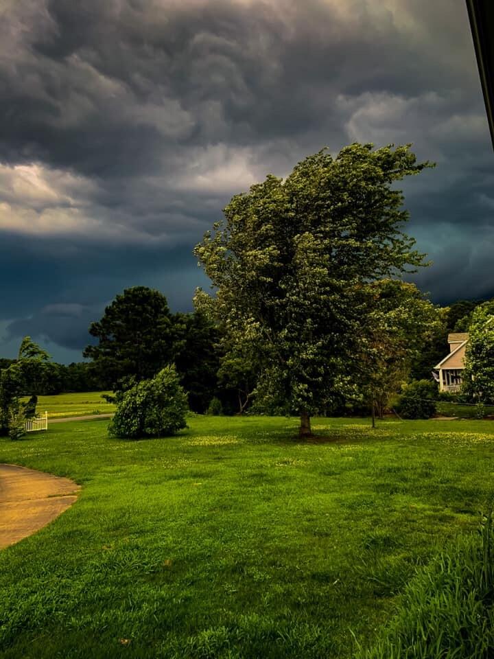 Camden, North Carolina (Kristen King).jpg