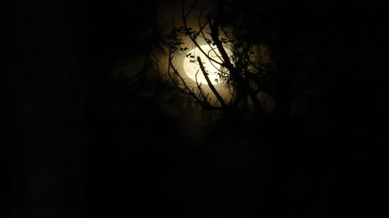 PHOTOS: Super Harvest Moon